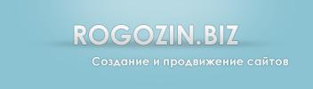 Rogozin.biz, компания