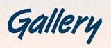 Gallery, компания